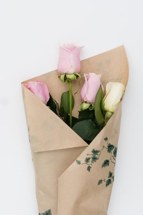 roses-web-2