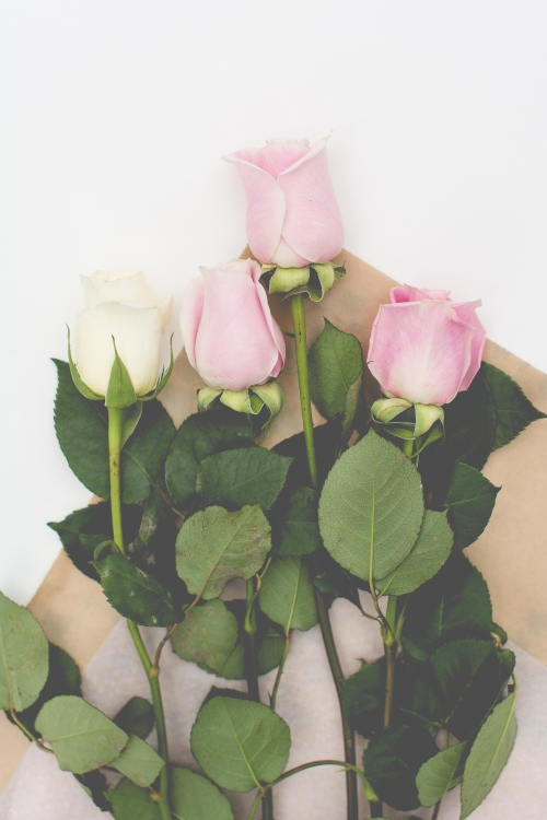 roses-web-4